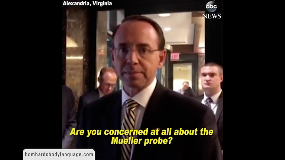 Body Language - Rod Rosenstein on Matt Whitaker and Mueller Investigation