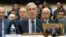 Body Language – Mueller Cognition In Congress